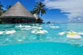 paradise_beach_1920x1080